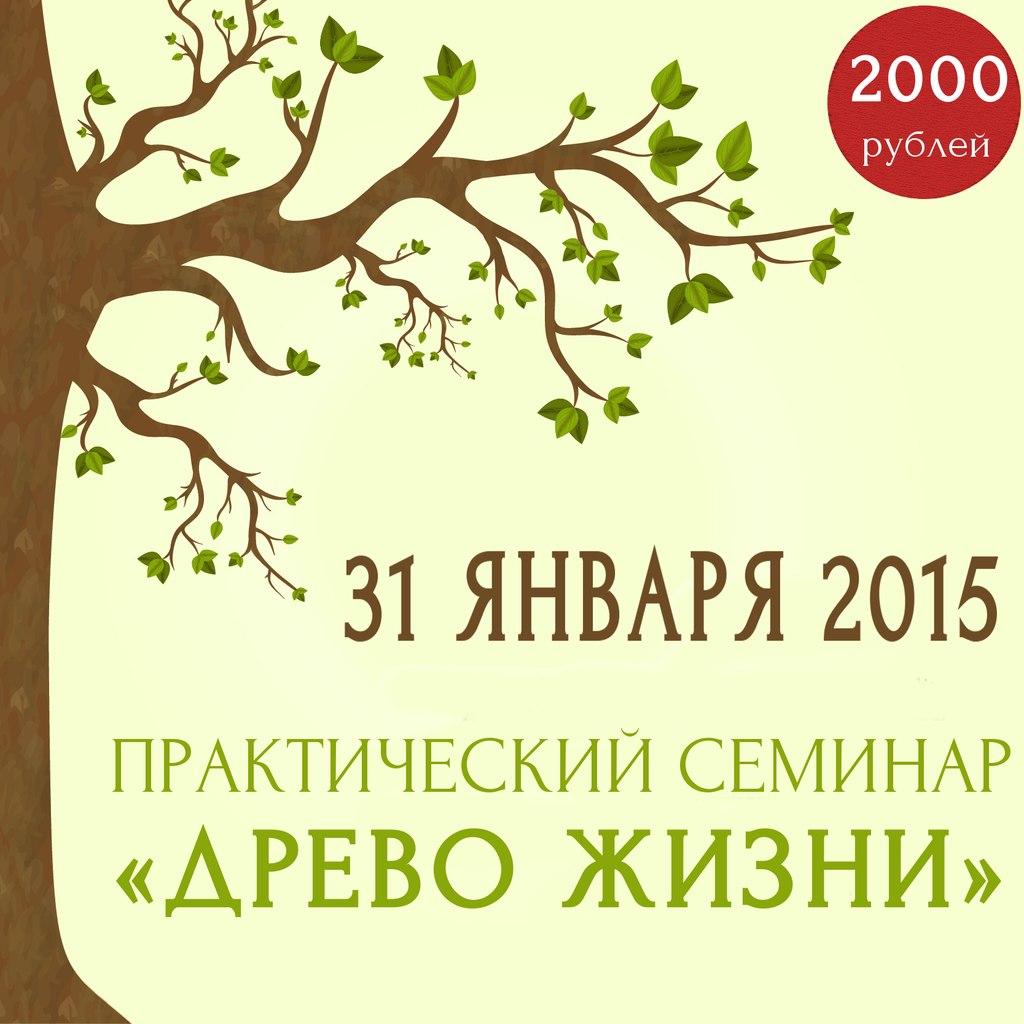 Афиша Коломна Выездной практический семинар «Древо Жизни»