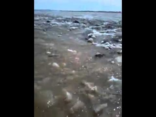 Потоп совхоз Ынталы Каркаралинский райн 11.04.2015