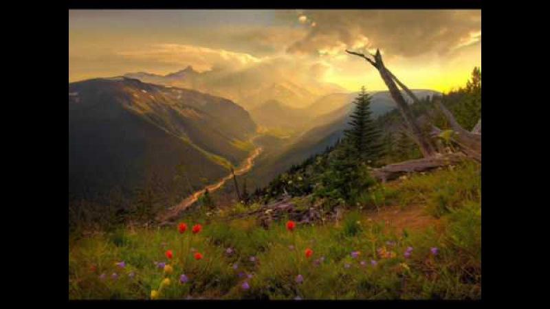 Robert Haig Coxon - The Light
