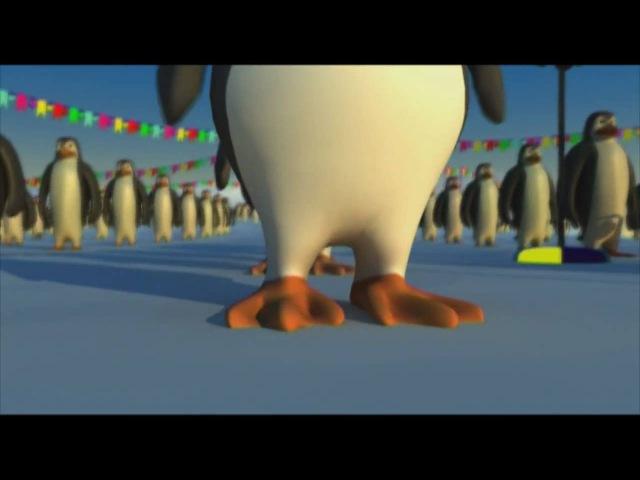La danse des Pingouins France