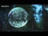 Мыльные пузыри, застывающие на морозе