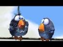 Весёлый мультик про птичек на проводе