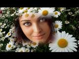 Поиск видеозаписей по запросу Александр Шапиро - Белые цветы