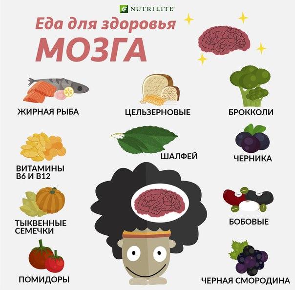Для того чтобы помочь нашему мозгу лучше работать, нужно полноценно  питаться и иметь правильный ритм жизни. 18e7cebc550