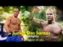 Junior Dos Santos Highlights