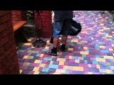 Ветродувка Sadko SBE-2600  Собирает листья ( садовый пылесос)