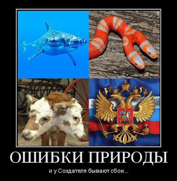 Украина планирует соглашение с РФ по газу только  до конца зимы, - Демчишин - Цензор.НЕТ 6508
