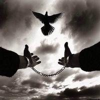 Знакомства в тюрмах