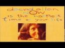 Daevid Allen Gong - 1977 NITHTOYL