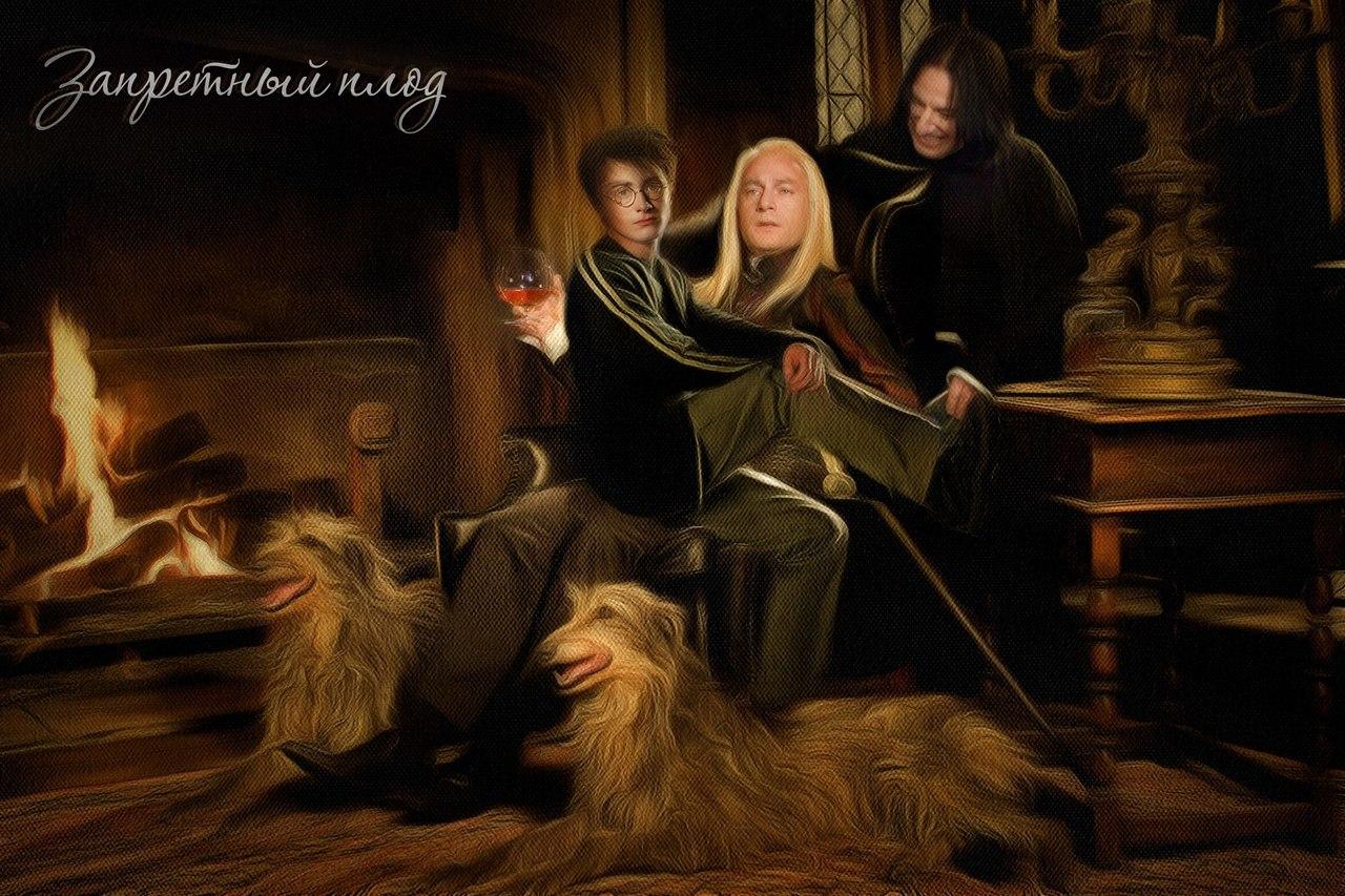 Гарри поттер и магия секса фикбук
