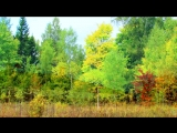 «ОСЕННЕЕ НАСТРОЕНИЕ» под музыку Зара - Осенние листья (минус). Picrolla