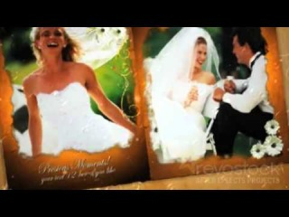 0013 Our Precious Wedding Moments