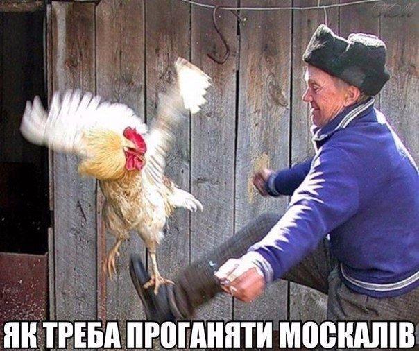 """""""Боюсь, что в Украину снова приходит кровавая весна"""", - Маккейн о выводе российских войск из Сирии - Цензор.НЕТ 1614"""