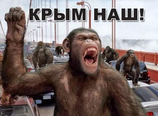 ОБСЕ не решила ни одного вопроса. Мы к ним даже не обращаемся, - луганский губернатор Москаль - Цензор.НЕТ 5768