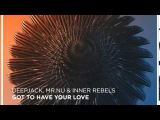 Deepjack, Mr. Nu &amp Inner Rebels - Got To Have Your Love (Andrey Exx &amp Troitski remix) preview