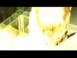 SZAMANKA (La Sciamana) di A. Zulawski - Trailer by CAINA
