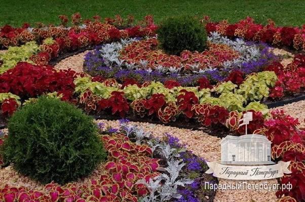 Газоны и клумбы с цветами