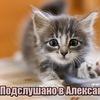 Подслушано в Александрове.Бесплатный Александров