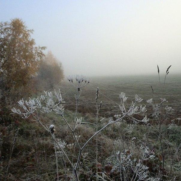 фото из альбома Александры Резчиковой №1