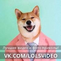 скачать смешные видео торрент - фото 9