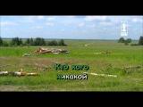 Караоке для детей - Песня крапивных побегов (Из к/ф
