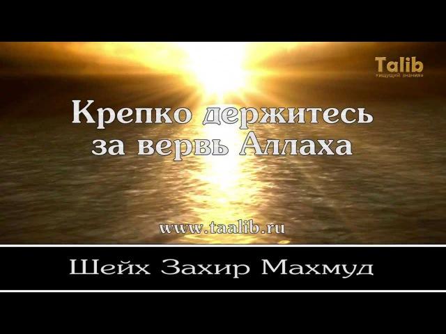 Крепко держитесь за вервь Аллаха | Захир Махмуд [Taalib.ru]