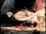 Легендарный фильм ЗЕМЛЯНЕ Earthlings полная версия HD