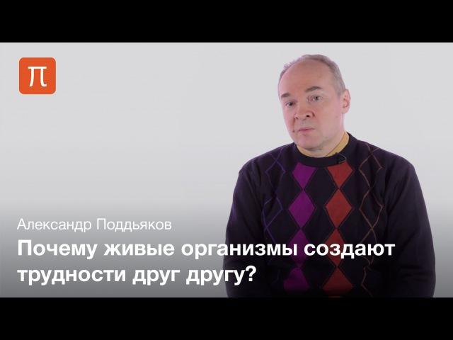 Эволюция создания трудностей — Александр Поддьяков