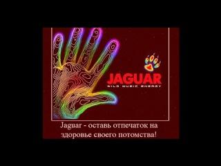 Факты о вреде Ягуара! =Вред энергетических напитков!=