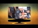 Сирия дағдарысы