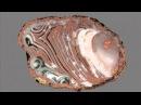 Драгоценные камни и минералы Агат неповторимый 4 Agate