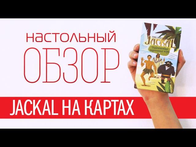 Карточный Шакал Обзор настольной игры Jackal The Card Game Boardgame review