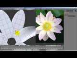 Modeling a Lotus flower in blender