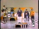 The Turtles Happy Together 1967