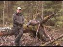 Охота на глухаря на току / Hunting for grouse on a Lek | Сезон охоты
