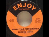 Elmore James - Shake Your Moneymaker