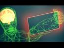 Голографическая память - суть концепции за 5 минут