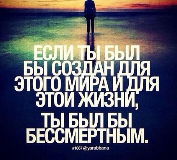 http://cs624923.vk.me/v624923169/6fc/za7OvlP5Wo8.jpg