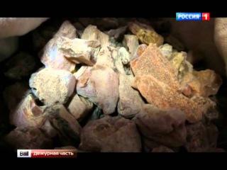 В Калининградской области ликвидирована банда добытчиков янтаря