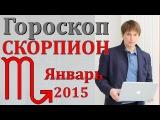 гороскоп  скорпион  январь 2015  гороскопы. астрологический прогноз для знака  скорпион на  2015