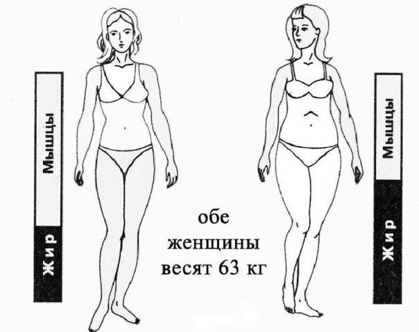 Эффективные ибезвредные мед препараты длябыстрого похудения и возврата веса