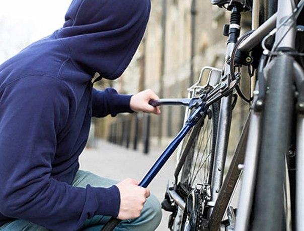В России кражу велосипедов могут приравнять к угону