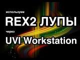 Используем REX лупы через UVI Workstation