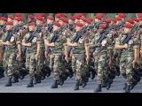 défilé du 14 juillet 2015 de France 2/ Bastille Day parade 14 July 2015