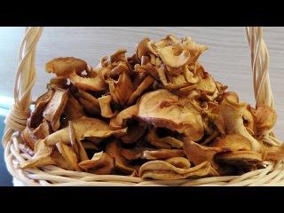 Сушка яблок в духовке видео рецепт