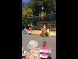 ДЗ- Настя
