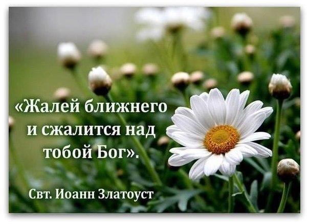 pp.vk.me/c624925/v624925891/3b837/nMkRpUv_VMw.jpg