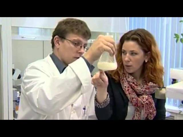 Белгородская Эфко перевозит низкокачественное пальмовое масло в цистернах из-под бензина