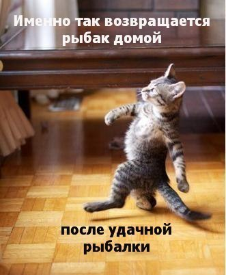 http://cs624926.vk.me/v624926471/1620a/0pQdVgmHXvc.jpg