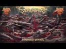 Screwrot Deranged Genesis 2015 Full Album
